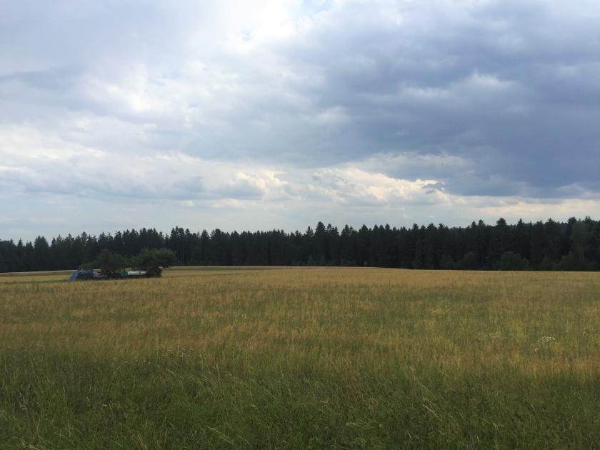 Meine neue Heimat: Schwarzwald