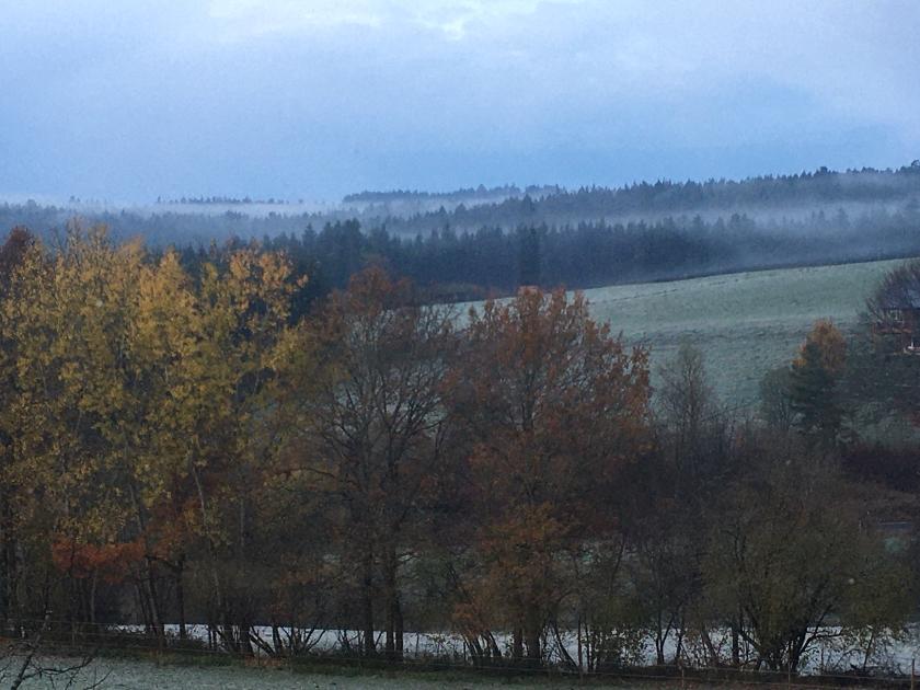 Meine heue Heimat: Schwarzwald